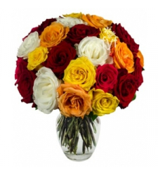 Mixed Roses  Online Order to Cebu Philippines