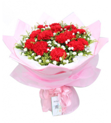 14 Red Carnations with Solidago Online Order to Cebu Philippines