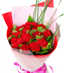 11 Red Carnations with Green leaves Online Order to Cebu Philippines