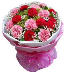 19 Pink Red Carnation Online Order to Cebu Philippines