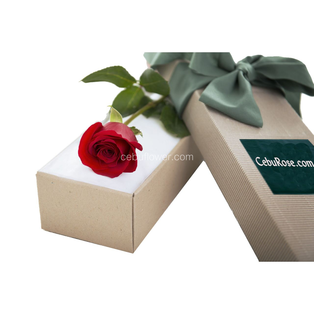 Single Red Rose in Box Send to Cebu, Delivery Single Red Roses in ...