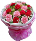 send carnations to cebu