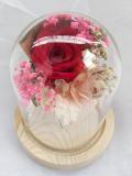 send preserved rose to cebu