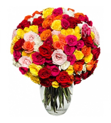 50 Blooms of Roses  Online Order to Cebu Philippines