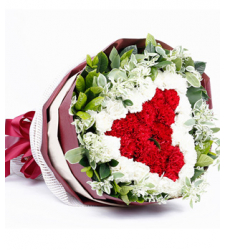 Red and White Carnations Online Order to Cebu Philippines