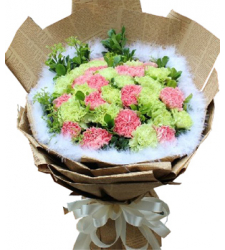 Green Carnations and Pink Carnations Online Order to Cebu Philippines