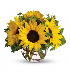 Cheery - 4 Stems Sunflowers in Vase