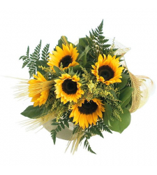 Fall Sunflowers 5 Stems Online Order to Cebu Philippines,Flowers to Cebu Philippines