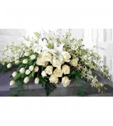 Send White Tribute To Cebu