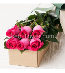 send 6 pink roses in box to cebu in philippines