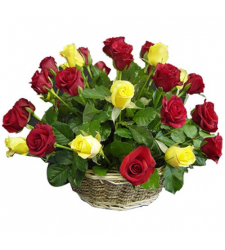 send 24 multi color roses in basket to cebu in philippines