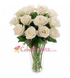 send a dozen of white roses in vase to cebu