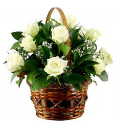send dozen of white roses in basket to cebu