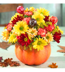 send pumpkin flowers to cebu philippines