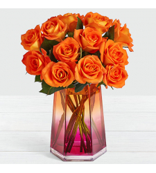 send halloween 12 stems of orange roses to cebu