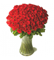 100 Fresh Red Color Roses in a Vase