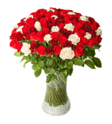 100 Red and White Roses in Vase