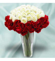 48 Red Roses and White Roses in Vase