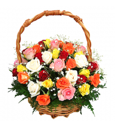 Mixed 24 Fresh Roses in Basket