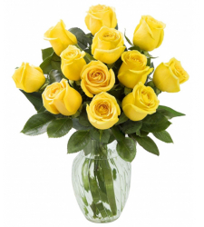 12 Yellow Roses in a Vase