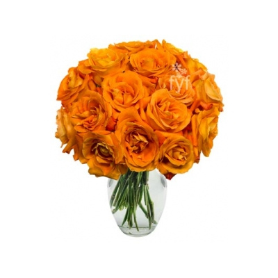 24 orange roses vase to cebu