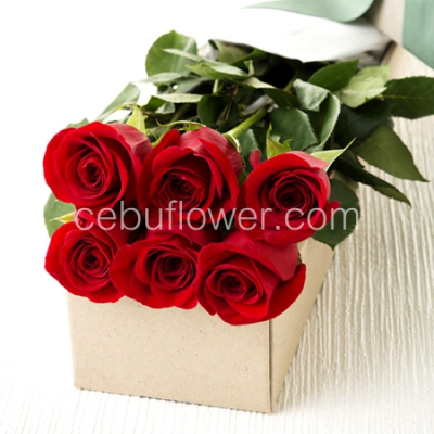 send 6 red roses in box to cebu to philippines