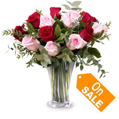 send 1 dozen red and pink roses in vase to cebu