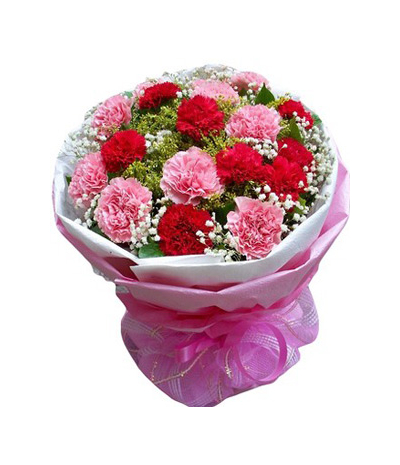 24 Pink Red Carnation Online Order to Cebu Philippines